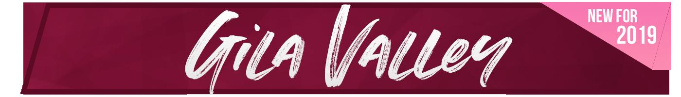 RUSH City Banner-Gila Valley New