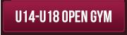 U14-U18 Open Gym2